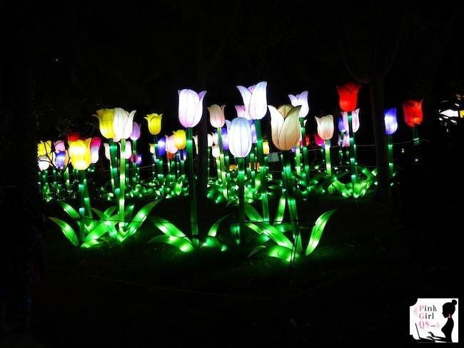 glow8