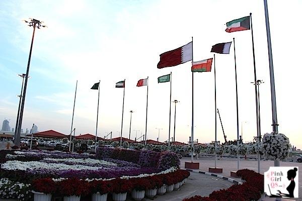 qatar1day31